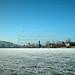 Wesslinger See Oberbayern im Winter (20090110_bmw42_DSCN0062) - Wesslingersee, Weßling, Ufer, Winter, Schilf, Natur, 10.01.2009, Winter, Blick auf Häuser des Ortes