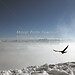 Herzogstand (B100214bmw42_IMG_5929) - Herzogstand am WalchenseeKampenwand Aschau im Chiemgau - Bergbahn von  Aschau zur Bergstation. Die dreigezackte Felskulisse der 1669 m hohen Kampenwand mit dem Chiemgaukreuz, dem größten Gipfelkreuz der Bayerischen Alpen ist auffallend und ein typisches Wahrzeichen der Region. Die Kampenwandseilbahn fährt auf knapp 1500 m Höhe. Von der Bergstation und der nahe gelegenen SonnenAlm eröffnet sich ein traumhafter Ausblick auf die Zentralalpen - Berchtesgadener Berge, das steinerne Meer, die Loferer Steinberge und in die Hohen Tauern kann man schauen. //