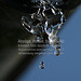 frozen raindrops (B101216_2126) - frozen raindrobs