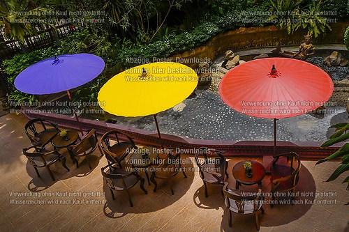Umbrellas -0616