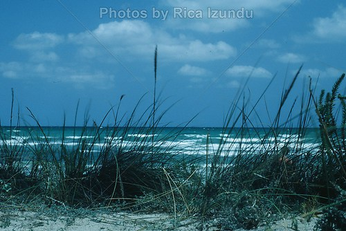 02_View_From_the _Dune
