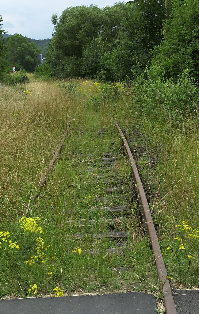 Run wild (Run wild) | Railroad covered with grass | trees, railroad, green, tranquility, outdoors, solitude, calm, grass, rural scene, no people, plants, landscape, field, nature
