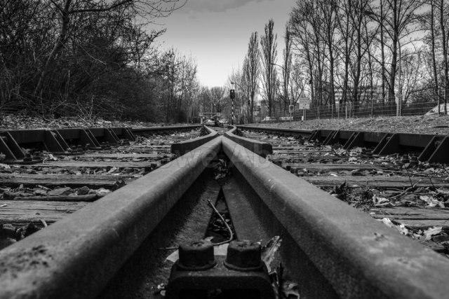 Long train comming? (gleise-0136h-web_183654_by-adlerauge64_piqs_de) | Tote Gleise in Haselhorst (piqs.de ID: 3db456d233e7e2306c00b3bc844c31a6) | Gleis, Siemens, Haselhorst, Weiche