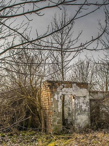 wall-0313