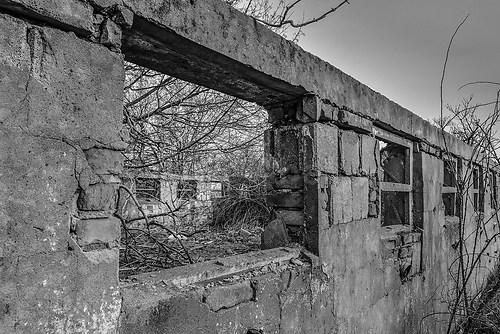 wall-0276