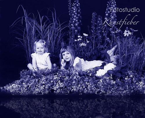 Blumenwiese im Studio