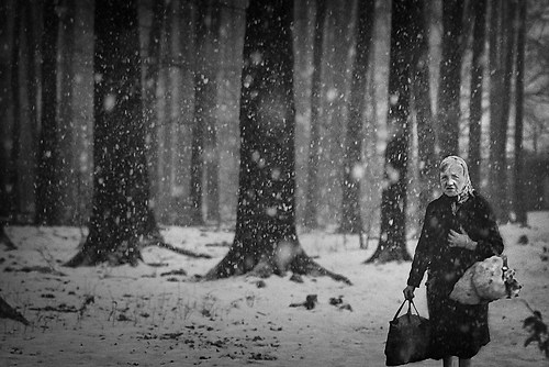 Winter 049