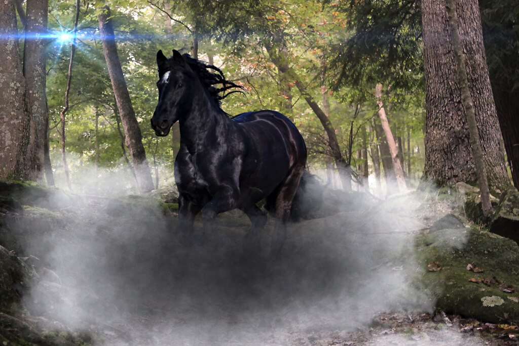 Horse_wood | Uli Pferde