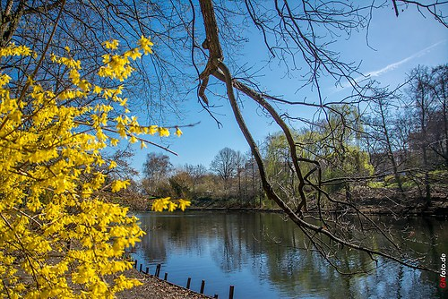 Frühling 2014_005_Fennsee-Berlin