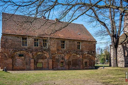 Frühling 2014_011_Kloster-Zinna