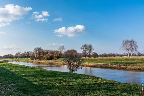 Frühling-Elster_20140326_16-46-00_006