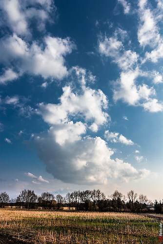 Frühling-Elster_20140326_16-56-49_012