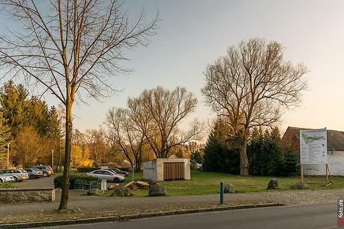 Frühling-Elster_20140326_17-33-12_024