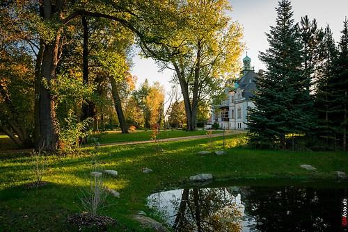 Herbst2014_Schlosspark_20141028_17-01-52_002