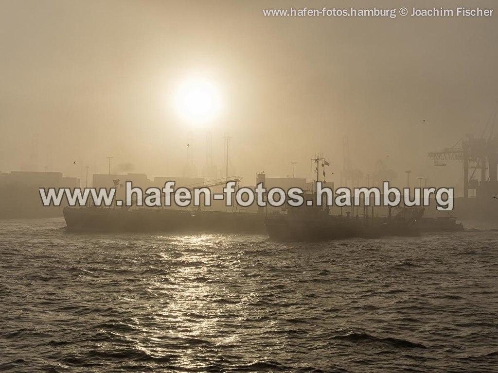web 2014-11-25 nebel sonne 170-Bearbeitet | OLYMPUS DIGITAL CAMERA