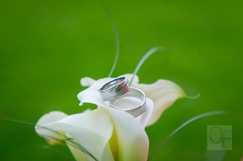 Portfolio Hochzeit-56
