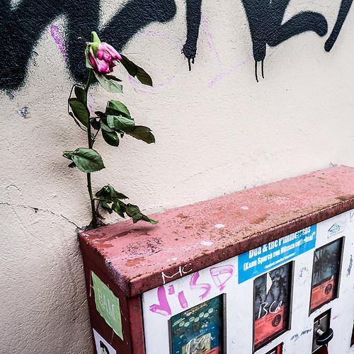 20160323_Berlin_#330++
