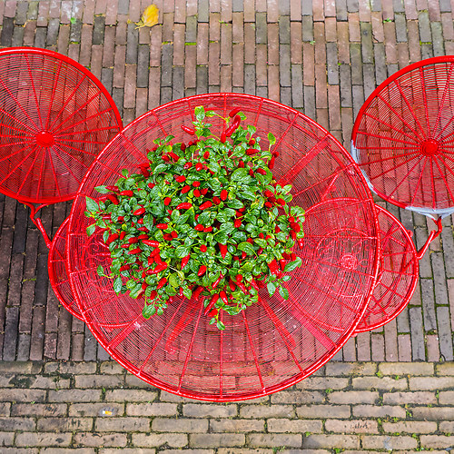 20161015_Herbstferien in NL_#077++