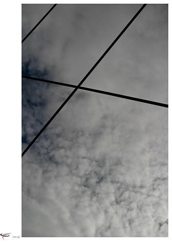 baumwipfelpfad neuschoenau 09