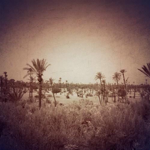 marrakech 43