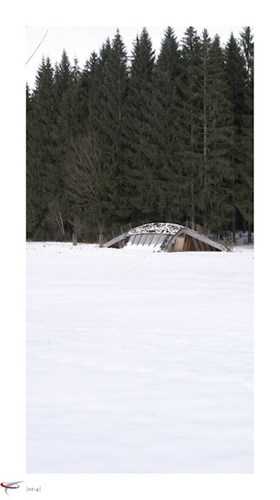 wildniscamp_am_falkenstein_01_ufo_landing