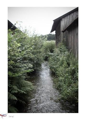 muehlenwasser_01