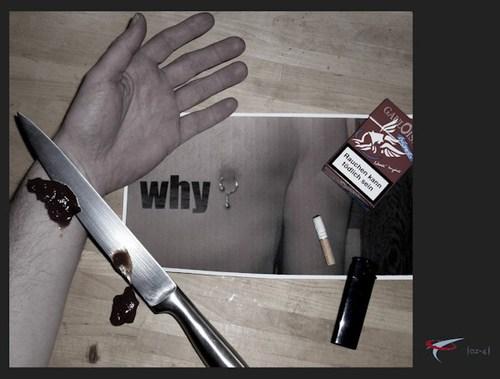 die_letzte_zigarette_why