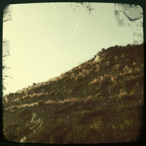 sierra_nevada_17