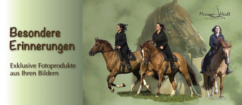 Slider_Collagen | Collage aus drei Fotos, Frau reitet auf galoppierendem Pferd | Collage, Pferdefotos, Bilder von Pferden, Frau und Pferd, Reiten, Freiheit