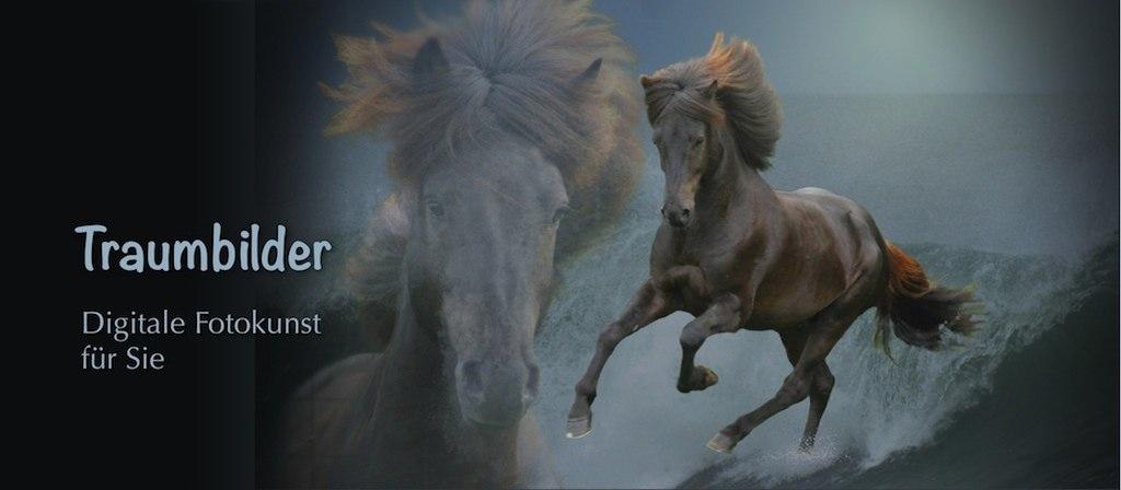 Fotokunst | Fantasyfilm bzw. Fotokunst: galoppierendes Islandpferd auf einer Welle. | Fotokunst, Pferdefoto, Islandpferd, Fantasy, Pferdebild, Collage, Composing