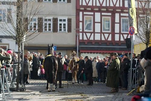 Pferdehandel auf dem Marktplatz