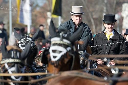langjähriger Pferdemarktteilnehmer: Volker Knodel