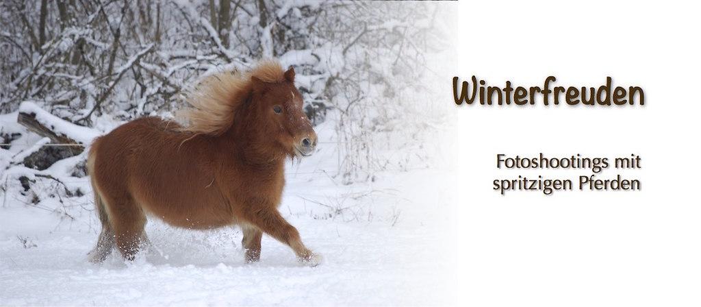Slider_Winterfreuden