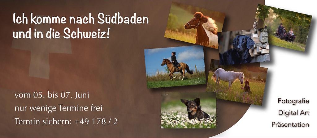 Werbebanner Südbaden Homepage