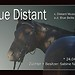 Boxenschild Blue Distant -