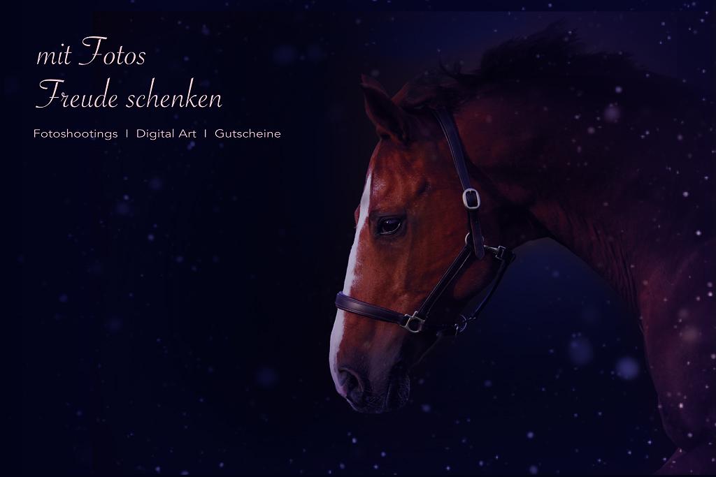 Winter - Geschenkideen V2