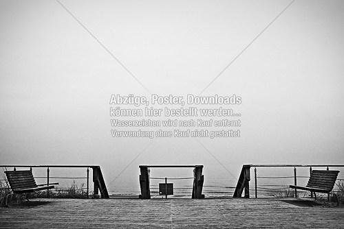 20081104-20081104-_MG_3190