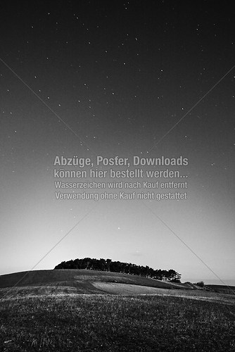 20081112-_MG_3725-2