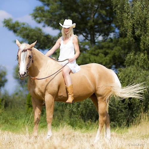 Ranch-8543