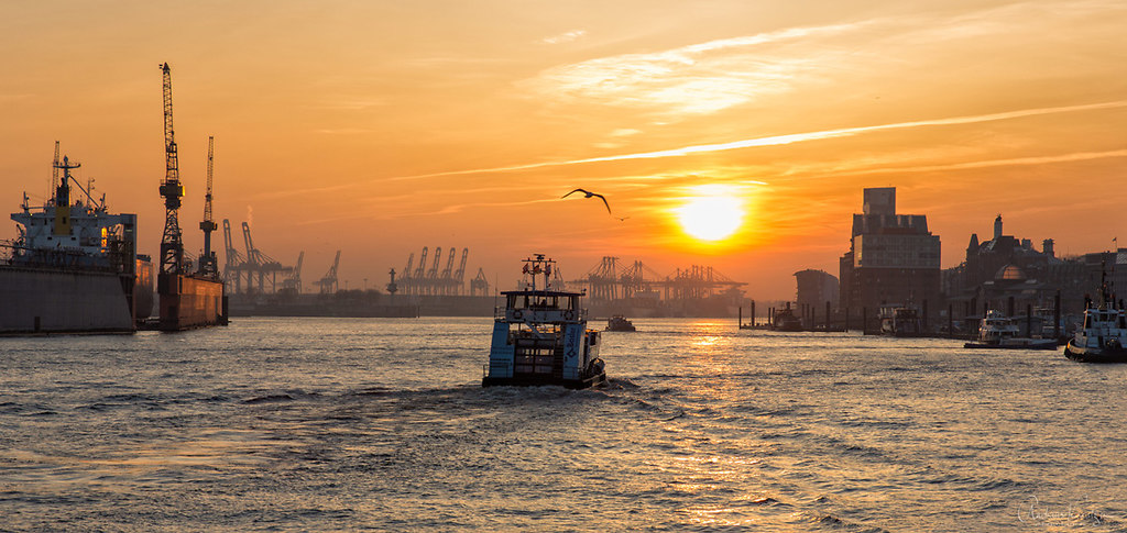 Sonnenuntergang am Hafen VI (ZN5A8325-Bearbeitet-Bearbeitet)