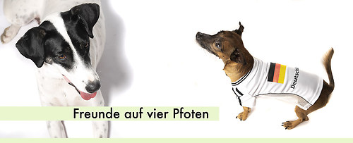 550-Tiere