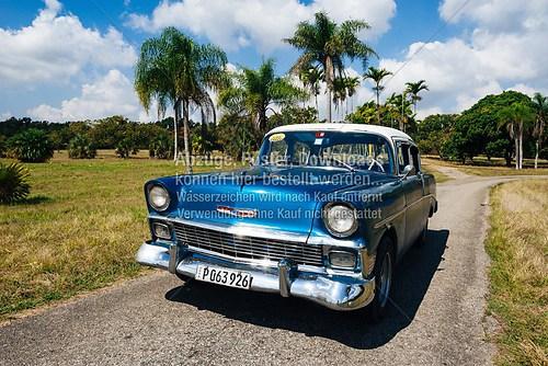 Kuba_Havana_car_Chevrolet_botanical_garden_5853