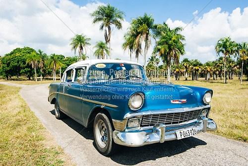 Kuba_Havana_car_Chevrolet_botanischer-garten_5856
