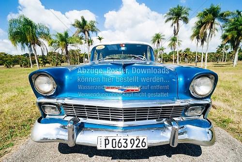Kuba_Havanna_car_Chevrolet_botanischer-garten_5859