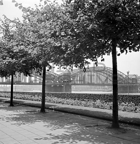 Köln (UNA_01648003.highres)