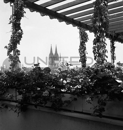 Köln (UNA_01647990.highres)