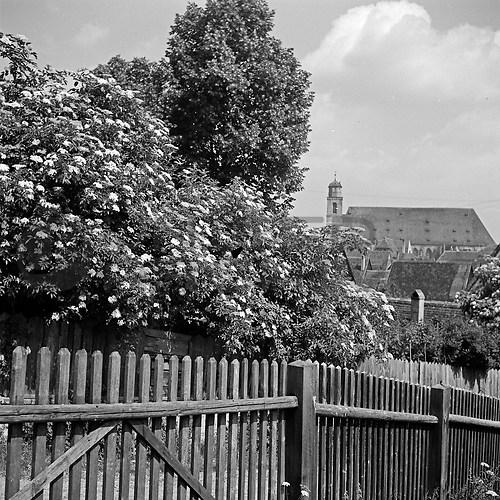 Dinkelsbühl (UNA_01943249.highres)