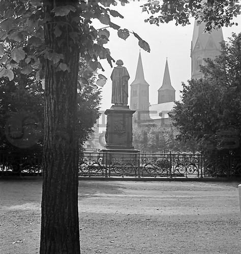 Bonn (UNA_01835545.highres)