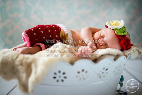 Fotografie Alexander Weiß - Babyfotografie
