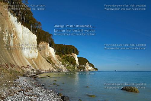 Blick auf die Kreidefelsen nördlich des Kieler Ufers